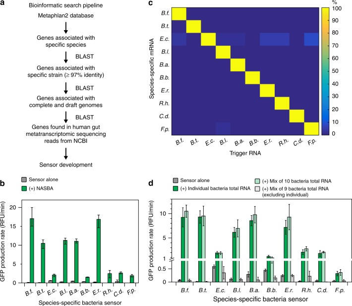 Species-specific mRNA sensors. a Bioinformatic pipeline for identifying species-specific mRNAs. b Best performing NASBA primers and species-specific mRNA sensors for each species. NASBA reactions were performed on 10 ng of total RNA for 90 min. Outputs from NASBA reactions were used to activate toehold switch sensors in paper-based reactions. Data represent mean values of three technical replicates. Error bars represent high and low values of the three replicates. c Orthogonality of species-specific sensors. Each sensor was challenged with 2 μM of trigger RNAs from each species representing what would be amplified in a NASBA reaction. GFP production rates for an individual sensor were normalized to the production rate of the sensor plus its cognate trigger (100%). Data represent mean values of six replicates (two biological replicates × three technical replicates). Full data and s.d. are shown in Supplementary Figure 6 . d Orthogonality of NASBA primer sets. NASBA reactions were performed on 10 ng of total RNA for 90 min. Data represent mean ± s.d. of six replicates (two biological replicates (NASBA reactions) × three technical replicates (paper-based reactions))
