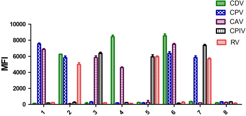 Validation of the artificial mixed infection samples. 1, CPV and CAV positive sample; 2, CDV, CPV, and RV positive sample; 3, CAV and CPIV positive samples; 4, CDV and CAV positive sample; 5, CPIV and RV positive sample; 6, CDV, CPV, and CAV positive sample; 7, CPV, CPIV, and RV positive sample; 8, negative control.