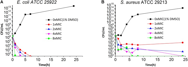 Time Killing Curve of 5 against E. coli ATCC 25922 (A) and S. aureus ATCC 29213 (B) . The different concentration of 5 was represented by different colors, 0× MIC (1% DMSO) (black), 1× MIC (red), 2× MIC (blue), 4× MIC (pink) and 8× MIC (green).