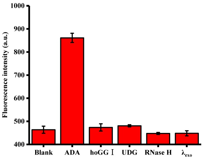 Relative fluorescence intensity of the reaction systems upon addition of ADA, hoGG I, UDG, RNase H and λexo. Error bars were estimated from three replicate measurements.
