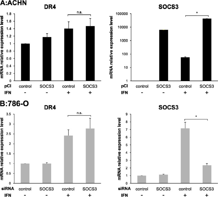 Effect of pCI-SOCS3 vector or SOCS3 siRNA transfection on DR4 mRNA expression mRNA expression levels of DR4, DR5 and SOCS3 were quantified by real-time PCR. DR4 mRNA expression was increased by IFN-α stimulation but not by SOCS3. The y axis shows the relative mRNA expression level. The results are expressed as the relative mean ratio ± SE of at least three independent determinations. * p