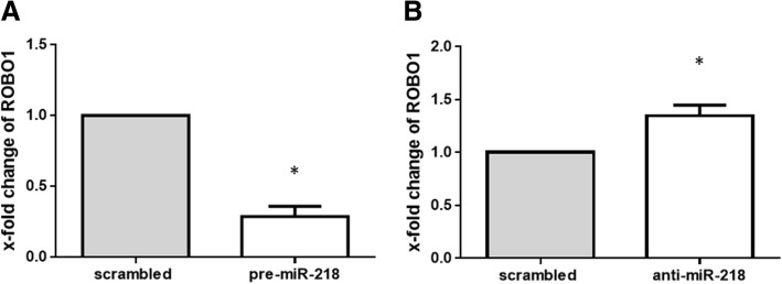 Influence of overexpression and knockdown of microRNA-218-5p (miR-218) on the expression of roundabout1 (ROBO1). Expression of ROBO1 in rheumatoid arthritis (RA)-fibroblast-like synovial cells (FLS) was determined relative to the controls transfected with scrambled <t>RNA,</t> which was defined as 1. a Transfection of RA-FLS ( n = 5) with precursor miR-218 (pre-miR-218) for 48 h decreased the levels of ROBO1 compared to scrambled RNA-transfected controls, as determined by SYBR green real-time <t>PCR</t> analysis. b Knockdown of miR-218 for 48 h in RA-FLS ( n = 5) increased the level of ROBO1 compared to scrambled RNA-transfected controls, as determined by SYBR green real-time PCR analysis. Values are presented as means ± SEM: * p