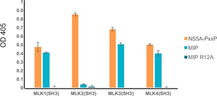Binding of MIP and NS5A peptides to SH3 domain of other members of MLK subfamily (MLK1–4). To determine whether MIP and NS5A can interact with SH3 domains of MLK1–4 proteins, the purified GST-MLK1–4 SH3 domains were incubated with biotinylated peptides, NS5A peptide (KKAPTPPPRRRR-GGG-K-biotin), MIP (AIRINPNGTWSRQAETVES-K-biotin), and MIP-R12A (AIRINPNGTWSAQAETVES-K-biotin), immobilized on a NeutrAvidin-coated 96-well ELISA plate. Binding of SH3 domain was detected with anti-GST antibody conjugated to HRP. Experiments were performed in triplicate, and the results are an averaged value; error bars reflect the standard deviation of each point. See also Fig. S6 .