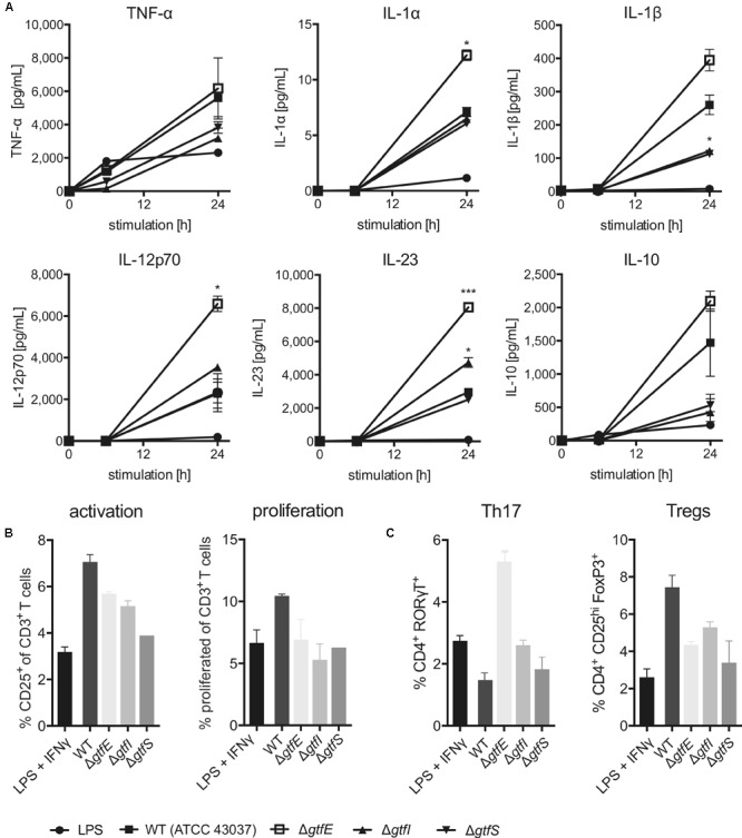 Effects of protein O -glycosylation on T. forsythia immunogenicity. (A) Secretion of inflammatory cytokines by human DCs upon stimulation with T. forsythia wild-type (WT) and glycosyltransferase-deficient mutants ( T. forsythia Δ gtfE , Δ gtfI , and Δ gtfS ) as measured in culture supernatants by ProcartaPlex Multiplex Immunoassay. (B,C) T cell-priming upon APC stimulation with T. forsythia wild-type and glycosyltransferase-deficient mutants was assessed by culturing PBMCs. (B) T cell activation was measured via expression of CD25 by flow cytometry. Cells were pre-gated for live CD3 + cells, T cell proliferation was assessed after 8 days by CFSE dilution,. (C) CD4 + T cell differentiation was assessed by expression of signature transcription factors for Th17 (RORγT) and Treg (FoxP3) cells as measured by flow cytometry. All data are presented as mean ± SEM of triplicate determinations. One representative out of three (A) and two (B,C) , respectively, independent experiments is shown. Statistically significant differences in (A) are indicated as ∗ p