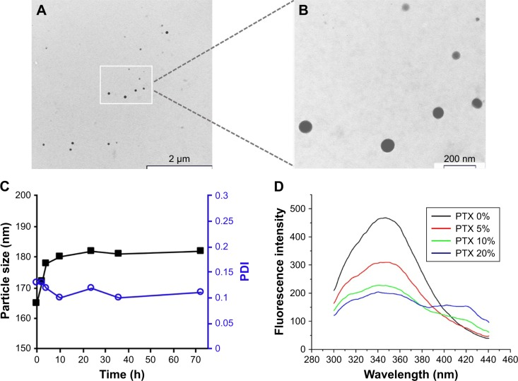 KER-NPs-PTX analysis. Notes: Transmission electron microscopy images of fixed KER-NPs-PTX at two magnifications: scale bar 2 µm ( A ) and scale bar 200 nm ( B ). Morphological analysis showed particles spherical in shape, smooth surface, and an average dry diameter of ~80 nm. Stability of KER-NPs-PTX in physiological conditions ( C ). Fluorescence spectra of KER-NPs-PTX at different PTX loading percentages ( D ). Abbreviations: KER-NPs-PTX, PTX loaded in keratin nanoparticles; PDI, polydispersity index; PTX, paclitaxel.