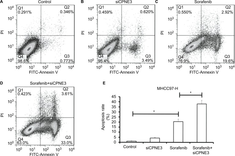 Silencing copine-III enhances sorafenib-induced MHCC97-H cell apoptosis. Notes: ( A – E ) MHCC97-H cells, which were infected with control siRNA or siCPNE3, were treated with indicated concentrations of sorafenib and analyzed by flow cytometer. * P