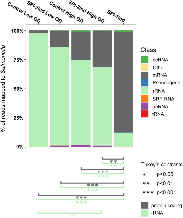 Relative composition of the OMVs RNA cargo for each culture condition. Individual colored bars represent the relative amount of each RNA class in the respective OMV RNA-Seq data (average of the biological triplicates). Number of reads have been normalized with DESeq2 . RNA classes are defined from the Salmonella LT2 genome annotation (NCBI accession number AE006468.2 ) or pSLT plasmid annotation (NCBI accession number AE006471.2 ), with supplemental small RNA annotations from Srikumar et al. (2015) . The existence of significant proportion differences among conditions for a specific RNA class was assessed by one-way ANOVA and F -test. Significant differences for rRNA and mRNA classes between conditions are indicated under the graph, determined by Tukey's range test. Further details for other RNA classes can be found in Supplementary Dataset B .