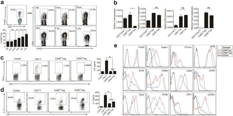 Characterization of CD4 + Foxp3 + CD69 + Tregs. a Density plots show CD69 expression in gated CD4 + Foxp3 + cells from freshly isolated Spl, PLN and MLN, PPs, IEL, and colonic LPL in Foxp3 GFP knock-in mice. b Real-time PCR was performed to assess mRNA expression of T-bet, GATA3, RORγt and Foxp3 genes in CD69 + Treg and CD69 − Tregs. β-actin mRNA was used for the normalization. c 1 × 10 6 /ml naïve CD4 + T, CD69 + Treg or CD69 − Treg cells were cultured under Th1-cell-differentiation conditions for four days. The CD4 + naïve T-cells treatment without IL-12 were regarded as negative control. Each group of T-cells were stimulated with the cell stimulation cocktail for 6 h and then stained with anti-mouse CD4 and IFN-γ antibodies, followed by flow cytometry (left). The levels of IFN-γ in the supernatants of cultured T-cells were detected by ELISA (right). d BMDCs co-cultured respectively with 1 × 10 6 /ml naïve CD4 + T, CD69 + Treg, or CD69 − Treg cells at a ratio of 1:5 under Th17-differentiation conditions for four days. The CD4+ naïve T-cells treatment without IL-6 and TGF-β1 were regarded as negative control. Each group of T-cells were stimulated with the cell stimulation cocktail for 6 h and then stained with anti-mouse CD4 and IL-17 antibodies, followed by flow cytometry (left). The levels of IL-17 in the supernatants of cultured T-cells were detected by ELISA (right). e The expression levels of immunosuppressive markers in CD69 + Treg and CD69 − Tregs were analyzed using flow cytometry with indicated antibodies. Data are representative images or expressed as the mean ± SD of three independent experiments ( n = 5). * P