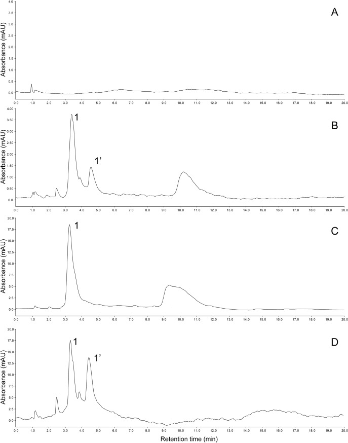 High-performance liquid chromatography (HPLC) chromatograms of (A) the green-tube spinach ( Spinacia oleracea ) strain NPL08, (B) the red-tube spinach strain Sosei salad akari, (C) the red-tube spinach strain <t>Banchu</t> <t>akakuki</t> minster, and (D) red beet ( Beta vulgaris ) extract (positive control) monitored at 538 nm. Possible betacyanins (1 and 1') were identified using mass spectrometry (see Table 1 ).