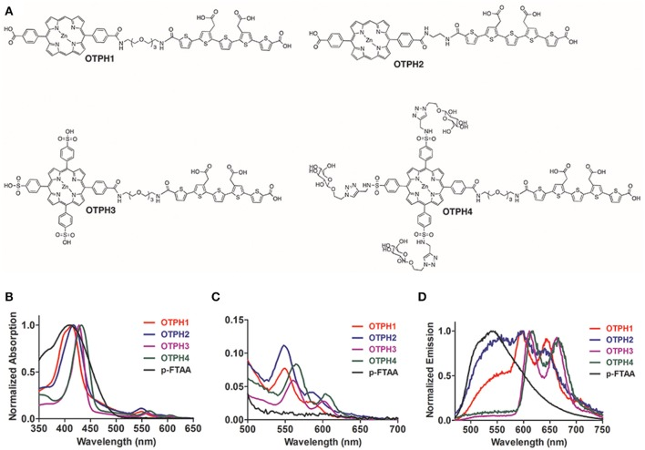 Chemical structures and optical characterization of the oligothiophene porphyrin hybrids (OTPHs). (A) Chemical structures of OTPH1, <t>OTPH2,</t> OTPH3, and OTPH4. (B,C) Absorption spectra of 3 μM OTPH or LCO dissolved in <t>PBS</t> buffer pH 7.4. (D) Emission spectra of 3 μM OTPH or LCO dissolved in PBS buffer pH 7.4.