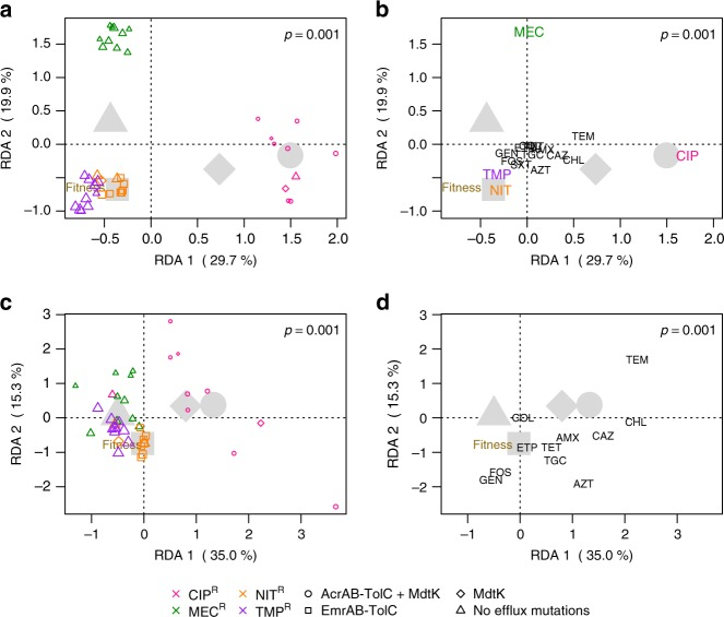 Results of multivariate statistical modeling. Graphical representations of two redundancy analyses (RDA, triplot) results relating various parameters to the observed changes in IC 90 between resistant mutants and respective wild-type strains for ( a , b ) 16 antimicrobials tested and ( c , d ) a subset of these antimicrobials, excluding ciprofloxacin, mecillinam, nitrofurantoin, trimethoprim, and trimethoprim-sulfamethoxazole. Each RDA is broken down into two plots; ( a , c ) where weighted averages of resistant mutants are plotted as colored symbols (color indicates resistance group, shape the assigned efflux group, and symbol size proportional to relative fitness, see Supplementary Fig. 4 ). In ( b , d ) antimicrobial drug names indicate the tip of vectors that pass through the origin in the direction of increasing IC 90 fold change or CR (direction of steepest ascent). Vectors can be used to interpret the change in IC 90 for the antimicrobials shown. For both statistical models, the first and second RDA axes shown display the majority of explained variation in IC 90 changes. Large gray symbols show centroids (average effect) for all resistant mutants within a given efflux group (shape). The vector tip of relative fitness (brown) is also shown. a The majority of explained variation is driven by primary resistances, where ciprofloxacin (pink)-resistant and mecillinam (green)-resistant mutants cluster distinctly from the other resistance groups, which showed higher relative fitness. b Resistant mutants possessing MdtK mutations alone (diamond) or together with AcrAB-TolC mutations (circle) are likely to show CR to chloramphenicol, ceftazidime, temocillin, and azithromycin, but sensitivity to gentamicin, fosfomycin, and trimethoprim. Whereas those without efflux mutations (triangle) are more likely to display low-level CS or no change to most antimicrobials tested. The analysis of the subset RDA ( c , d ) shows patterns consistent with the full model, but with less c