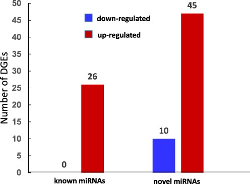 Number of different expressed miRNAs in response to RBSDV.