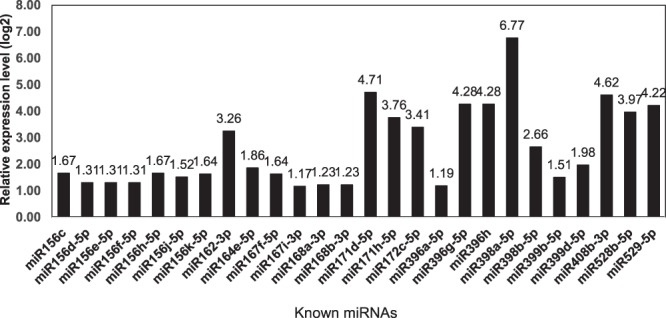Different expressed known miRNAs identified in sRNA libraries.