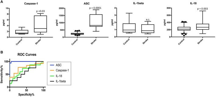 Inflammasome proteins are elevated in the serum of stroke patients. (A) Protein levels in pg/ml of caspase-1 ASC, <t>IL-1β</t> and IL-18 analyze by with a Simple Plex system in serum samples from patients with stroke and healthy donors. p -value of significance is shown above each box plot. Box and whiskers are shown for the 5th and 95th percentile. N.S., Not Significant. Caspase-1: N = 8 control and N = 13 stroke; ASC: N = 75 control and N = 16 stroke; IL-1: N = 9 control and N = 8 stroke; and IL-18: N = 79 control and N = 15 stroke. (B) ROC curves for caspase-1 (orange), ASC (blue), IL-1β (black) and IL-18 (green). Caspase-1: N = 8 control and N = 13 stroke; ASC: N = 75 control and N = 16 stroke; IL-1: N = 9 control and N = 8 stroke; and IL-18: N = 79 control and N = 15 stroke. Dark circles correspond to data points outside the 95% confidence interval.