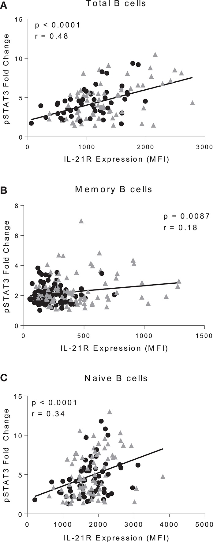 IL-21R levels correlate with IL-21-mediated pSTAT3 signaling. Correlation of IL-21R expression and pSTAT3 fold change in CD20 + (A) , total memory B cells (B) , and naïve B cells (C) . pSTAT3 levels were assessed by stimulating with IL-21 for 45 min and measuring pSTAT3 gMFI with no stimulation or with stimulation. Fold change was calculated by dividing IL-21 stimulation pSTAT3 gMFI by the no stimulation pSTAT3 gMFI. As there were no differences in slope between controls and RA patients, the correlation was conducted on both controls (black circles) and RA patients (gray triangles) ( n = 116). Correlation was assessed with the Pearson correlation.