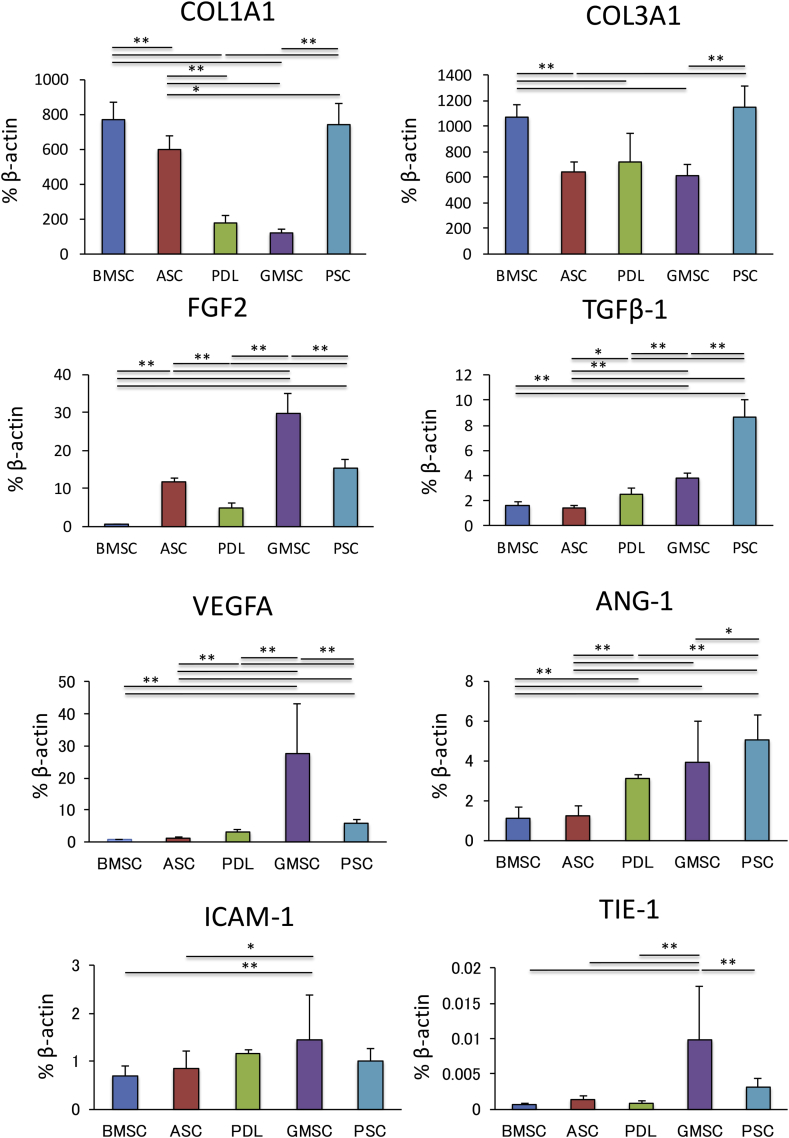 The expression levels of COL1A1 and COL3A1 in bone marrow-derived multipotent mesenchymal stromal cells (MSCs) and periosteum-derived MSCs were significantly higher than those in MSCs from other tissues. The expression levels of <t>FGF2,</t> VEGFA, ICAM-1, and TIE-1 in gingiva-derived MSCs were significantly higher than those in MSCs from other tissues. Periosteum-derived MSCs showed the highest levels of TGF-β1 and ANG-1 expression of MSCs from all tissue types.