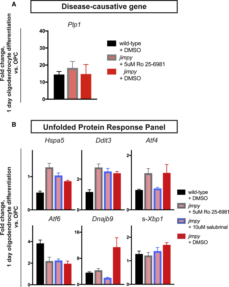 Ro 25–6981 Mechanistic Studies Reveal UPR Modulation in Jimpy (A) <t>qRT-PCR</t> of Plp1 for wild-type and jimpy at day 1 of oligodendrocyte differentiation with indicated treatment. Vehicle-treated controls same as Figure S6 D. For Atf6 n = 3 technical replicates per sample. n = 4 technical replicates per sample. (B) qRT-PCR of UPR-related panel for wild-type and jimpy at day 1 of oligodendrocyte differentiation with indicated treatment. Vehicle-treated controls same as Figure S6 D. For Atf6 n = 3 technical replicates per sample. For all other probes n = 4 technical replicates per sample. Error bars represent mean ± SD. See also Figure S6 and Table S6 .