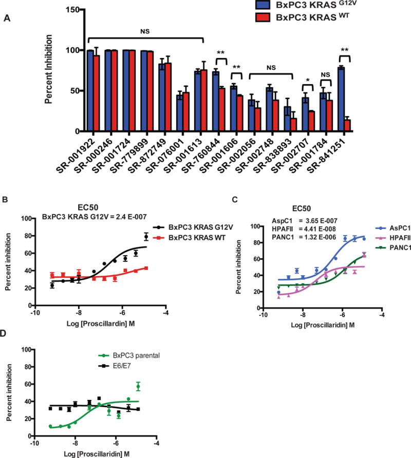 Validation of specificity of select inhibitors toward KRAS mutant cells (A) Top 15 compounds from the Spectrum library screen were analyzed at 12.4 μM in triplicate against BxPC-3-KRAS G12V and BxPC-3-KRAS WT cells in 3D format. Statistical significance was determined by unpaired t -test. NS = Non significant, * = p