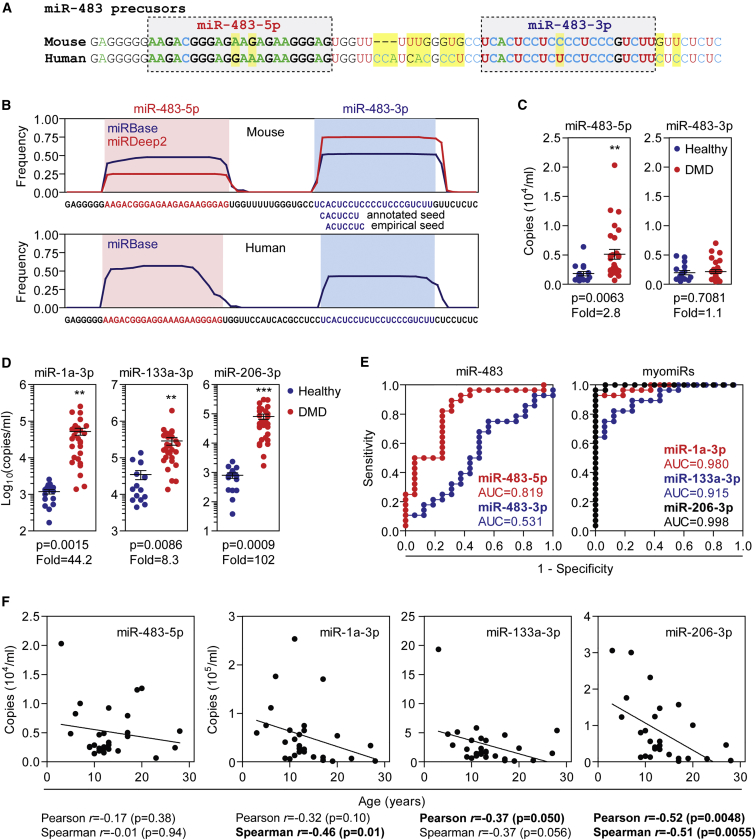 Analysis of miR-483 in DMD Patient Serum (A) Alignment of mouse and human miR-483 precursors. Differences are highlighted in yellow. (B) miRNA signature plots for mouse and human miR-483. Pooled mouse muscle library data are shown in red, and publically available miRBase data are shown in blue. Annotated and empirically derived miRNA seed regions are indicated. Serum from DMD patients (n = 28) and healthy controls (n = 16) were analyzed by sRNA TaqMan qRT-PCR for (C) miR-483-5p and miR-483-3p, and (D) the myomiRs: miR-1a-3p, miR-133a-3p, and miR-206-3p. Individual data points are shown and the mean ± SEM indicated. **p