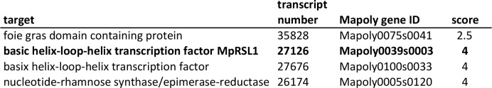 Predicted targets of MpFRH1 miRNA. Lower scores indicate a more likely target based on sequence similarity between the miRNA and the target transcript. Transcript number corresponds to the M. polymorpha gametophyte transcriptome ( Honkanen et al., 2016 ). Mapoly gene ID correspond to the M. polymorpha genome sequence published in Bowman et al. (2017 ).
