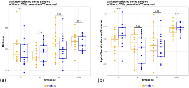 Richness ( a ) and alpha diversity ( b ) measures of different time points (2 h-, 4 h-, and 8 h-biofilms) and for saliva and indications (CC: cavitated caries, NC: no cavitated caries). OTUs present in the NTC were removed and richness and Shannon's alpha diversity measures are shown. The individual points represent individual diversity estimates.