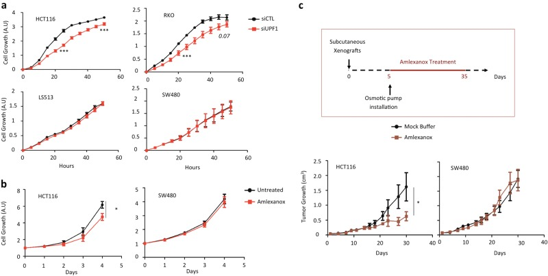 Impact of NMD inhibition in cell proliferation and tumor growth. a Cell proliferation of HCT116 (MSI), RKO (MSI), SW480 (MSS), and LS513 (MSS) colon cancer cells were analyzed with Xcelligence technology (see Materials and methods). Twenty-four hours post-transfection with a control (siCTL) or siRNA against UPF1 (siUPF1), cells were seeded in E-plate 96 to allow measurement of proliferation rates during 48 h. b HCT116 (MSI) and SW480 (MSS) CRC cancer cells were treated once a day during 4 days with or without 5 μM amlexanox. OD was measured every day after drug treatment using the WST-1 assay. c Upper panel: schematic representation of the protocol for treating mice with the NMD inhibitor amlexanox. The osmotic pump contained either a mock buffer made with 50% DMSO and 50% PEG400, or amlexanox diluted in the mock buffer in order to deliver 0.15 mg of amlexanox per day to each mouse during 28 days. Lower panel: comparative analysis of tumor growth (mean tumor volumes) in mice treated with or without amlexanox. Eight mice per group. Experiments were performed with MSI (HCT116) or MSS (SW480) CRC cells (left and right panels, respectively). All data are means ± SEM. Unpaired t -test was performed to determine significance. * p