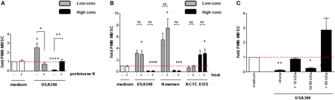 PMN-like MDSC levels are modulated by heat-stable S. aureus proteins sized 10 to 50 kDa. S. aureus supernatants were pre-treated prior to stimulation of PBMC. (A) Pre-treatment with 20 μg/ml of proteinase K at 37°C for 16 h, (B) heat-treatment at 80°C for 20 min, (C) filtration through spin columns with MWCO cut-off pores as indicated. 3% (USA300 or Newman) or 10% (NCTC 8325) of supernatants were used as high concentrations (black bars), 0.01% (all tested strains) were used as low concentrations (gray bars). Data are presented as means ± SEM. Differences between stimulated samples and medium controls were analyzed by a one-sample t -test. Differences between different pre-treatment conditions (A,B) were analyzed by a Mann-Whitney test. * p
