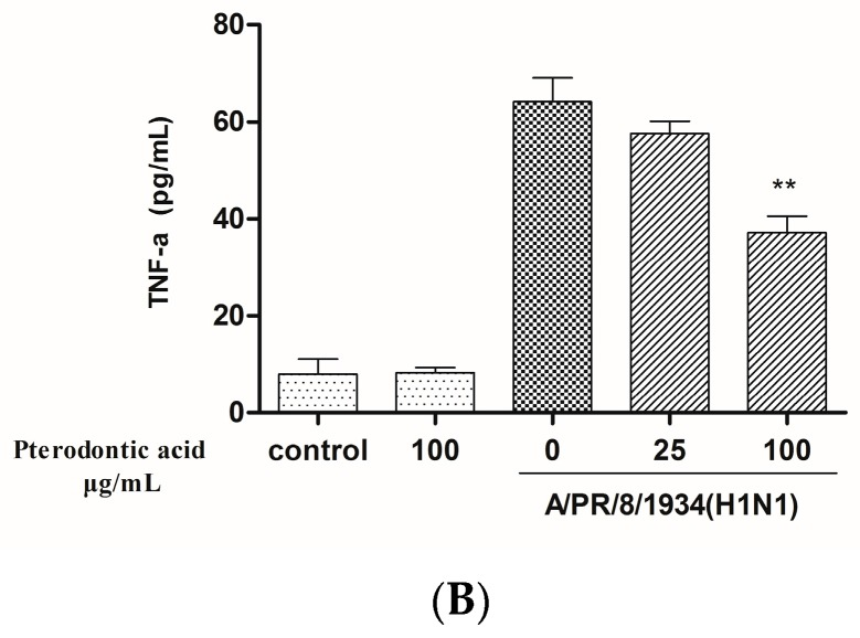 Pterodontic acid inhibited pro-inflammatory expr ession in influenza virus A/PR/8/34 (H1N1)-infected A549 cells. ( A ) A549 cells were infected with influenza virus (MOI = 0.2) in the presence or absence of different concentration of pterodontic acid for 24 h. Then, Total RNA was extracted and measured by <t>qRT-PCR</t> for the expression levels of IL-6, IP-10, MIP-1β, and MCP-1. The expression of each target gene was normalized to GAPDH; ( B ) The protein levels of cytokines and chemokines in the culture supernatant were assayed by <t>luminex</t> 24 h post A/PR/8/34 infection alone or in combination with pterodontic acid at 25 and 100 µg/mL. Each experiment was repeated in triplicate. * p