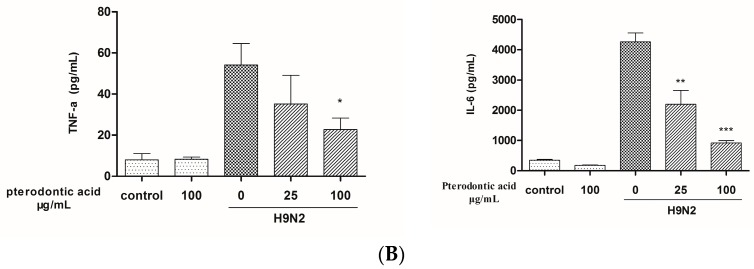Pterodontic acid inhibited pro-inflammatory expression in influenza virus A/Chicken/Guangdong/1996/ (H9N2)—infected A549 cells. ( A ) A549 cells were infected with influenza virus (MOI = 0.2) in the presence or absence of different concentration of pterodontic acid for 24 h. Then, Total RNA was extracted and measured by qRT-PCR for the expression levels of CCL-5, IP-10, TNF-α, and MIP-1β. The expression of each target gene was normalized to GAPDH; ( B ) The protein levels of cytokines and chemokines in the culture supernatant were assayed by luminex 24 h post A/Chicken/Guangdong/1996/ (H9N2) infection alone or in combination with pterodontic acid at 25 100 µg/mL. Each experiment was repeated in triplicate. * p