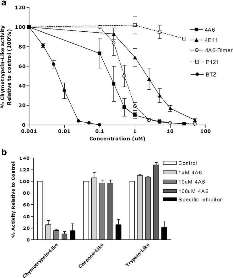 a Potent inhibition of proteasome activity by the hexameric 4A6 peptide. Luminescent cell-based proteasome assay measuring inhibition of chymotrypsin-like proteasome activity in intact THP1 cells after 1 h exposure to BTZ, the hexameric peptide 4A6, 4A6-dimer, the hexameric peptide 4E11 and, as control, the tripeptide P121/Reversin, a peptide-based transport inhibitor of the MDR protein P-glycoprotein. Results represent the mean of 3 experiments ± S.D. b Inhibition of chymotrypsin-like but not caspase-like and trypsin-like proteasomal activity by 4A6 . Chymotrypsin-like, caspase-like and trypsin-like proteasomal activities were determined with specific fluorogenic peptide substrates in cell extracts of THP1 cells after 1 h exposure to the indicated concentrations of 4A6. Controls for selective inhibition of chymotrypsin-like, caspase-like and trypsin-like activity included BTZ (10 nM), Ac-APnLP (25 μM) and leupeptin (20 μM), respectively. Results represent the mean of 3 separate experiments ± S.D
