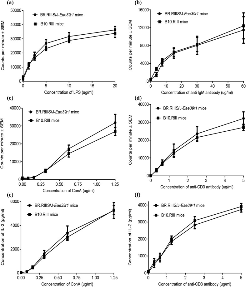 In vitro proliferative responses of splenic B and T lymphocytes from B10.RIII and BR.RIIIS/J- Eae39r1 mice. 3 H-thymidine incorporation, represented as counts per minute ± SEM, of B cells following in vitro stimulation with: ( a ) titrated concentrations (0–10 µg/ml) of LPS; ( b ) titrated concentrations (0–60 µg/ml) of anti-IgM antibody. 3 H-thymidine incorporation of CD4 + T cells following in vitro stimulation with: ( c ) titrated concentrations (0–1.25 µg/ml) of ConA; ( d ) a combination of titrated concentrations (0–3 µg/ml) of anti-CD3 antibody and fixed concentration of anti-CD28 antibody (3 µg/ml). ( e, f ) IL-2 production (mean ± SEM) in the supernatant of T cells stimulated with ConA or anti-CD3/CD28 antibodies