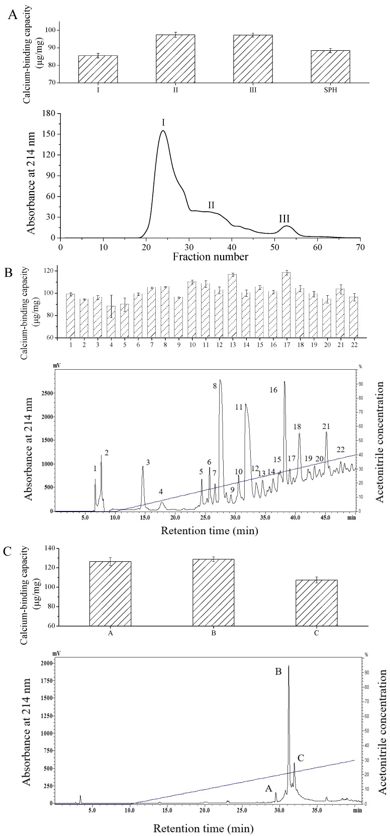 Chromatography elution profiles and calcium binding capacities of calcium-binding peptides. ( A ) <t>Sephadex</t> G-25 gel filtration chromatography of SPH; ( B ) Semi-preparative C18 <t>RP-HPLC</t> of fraction III; ( C ) RP-HPLC of fraction 17 from semi-preparative HPLC.