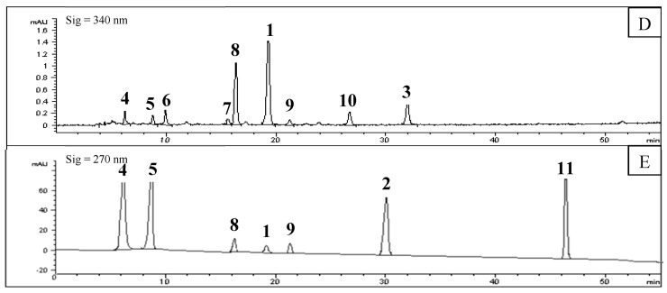 <t>HPLC</t> chromatograms of remaining precipitate of F. suspensa leaves ( A : 270 nm; B : 340 nm), solution of screened out compounds ( C : 270 nm; D : 340 nm), and mixed standard substances ( E : 270 nm); 7 standard substances were completely detected at 270 nm, so 340 nm was not done) ( 1 : Rutin; 2 : Phillyrin; 4 : Chlorogenic acid; 5 : Caffeic acid; 8 : <t>Forsythiaside</t> A; 9 : Hesperidin; 11 : Phillygenin).