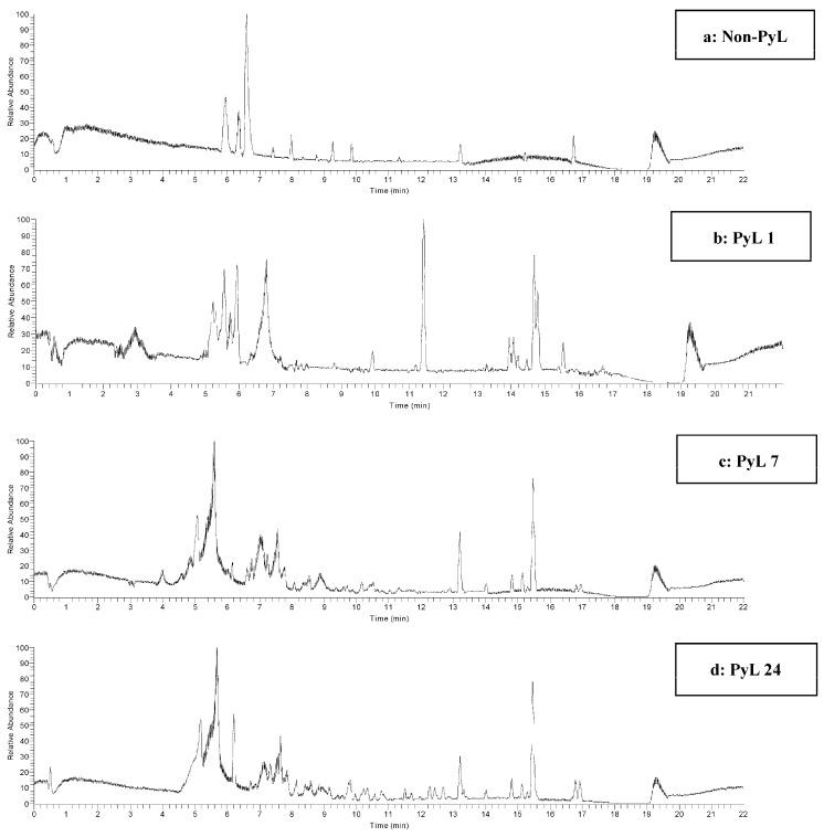 Selected HPLC-MS chromatograms (base peak) obtained using <t>LTQ-ORBITRAP</t> (Discovery) in the positive mode: ( a ) non-PyL; ( b ) PyL 1; ( c ) PyL 7; and ( d ) PyL 24, revealing the diversity of separated compounds from selected samples.