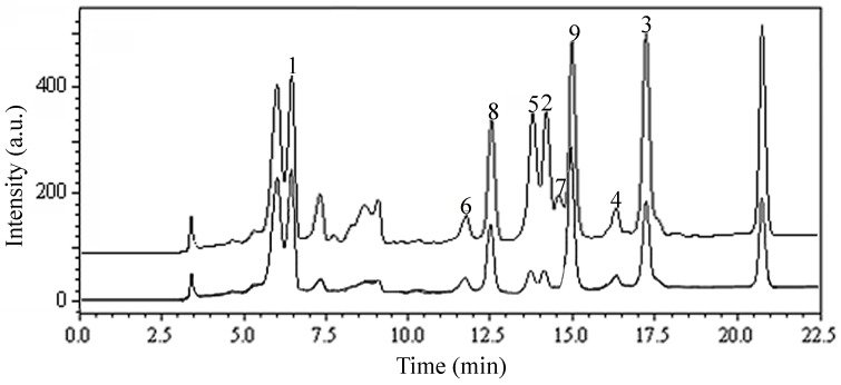 DPPH-HPLC chromatograms of n -butanol extract of Lonicera japonica leaves. Experimental conditions: Shim-pack VP-ODS column (250 mm × 4.6 mm, i.d., 5 μm); Column temperature: 25 °C; Flow rate: 1.0 mL/min; Detection: 254 nm; Injection volume: 10 μL. HPLC conditions are as follows: eluent A (MeOH) and eluent B (0.3% acetic acid in water, v / v ), linear gradient combinations: at t = 0, 70% B; at t = 20 min, 40% B; at t = 22.5 min, 40% B. a.u.: arbitrary unit.