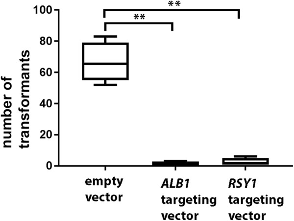 Toxicity of stably expressed Cas9. Binary vectors containing the gene encoding Cas9-NLS under the control of the TrpC promoter and terminator were introduced into Guy 11 using Agrobacterium -mediated transformation. Transformant numbers were assessed after 7 days on selective medium (transformants were subsequently sub-cultured for assessment of pigmentation after growth on CM).