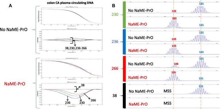 NaME-PrO application on BAT25 microsatellite using circulating DNA from colon cancer samples. ( A ) Comparison between NaME-PrO-treated and untreated screening for BAT25 microsatellites on plasma circulating DNA following HRM analysis: examples from three positive samples (#230, 236, 266) plus cfDNA from a healthy control patient (#38) are shown. ( B ) Capillary electrophoresis analysis for the same samples (red = variant, blue = WT).