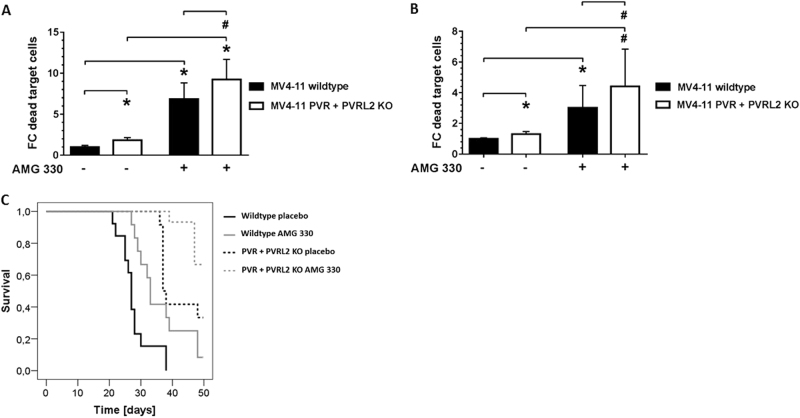 PVR and PVRL2 double-knockout cells recapitulate antibody effects in vitro and prolong the survival of NSG mice reconstituted with human T cells in vivo. By using CRISPR/Cas9, a polyclonal population of MV4-11 harboring double-knockout cells of PVR and PVRL2 was generated. Either MV4-11 wildtype or double-knockout cells were incubated with HD-PBMCs ( a ) or CD3 + cells ( b ) for 24 h without or with AMG 330. For statistical analysis, Mann–Whitney U -tests were performed (# p ≤ 0.05; * p ≤ 0.001, n = 3). c Immunodeficient NSG mice were transplanted with either MV4-11 wildtype (WT) cells or PVR- and PVRL2-double-knockout (KO) cells and reconstituted with human T cells. Treatment consisted of daily intraperitoneal application of either placebo ( n = 13 for WT and n = 12 for KO) or 15 µg/kg AMG 330 ( n = 12 for WT and n = 15 for KO). Log-rank tests were performed: WT placebo vs. KO placebo p