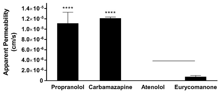 Eurycomanone showed low permeability as compared to propranolol and carbamazepine when assayed using the parallel artificial membrane permeability assay (PAMPA). The values were plotted based on the mean ± standard deviation. **** denotes significant difference when compared to eurycomanone ( p ≤ 0.0001). Line over bars indicates no significant difference between atenolol and eurycomanone ( p ≥ 0.05).