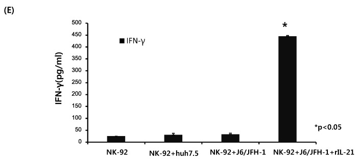 Effect of recombinant IL-21 on expression of CD56, STAT proteins, and IFN-γ in NK-92 cells. NK-92 cells were cultured in the presence or absence of recombinant IL-21 (0.2 ng/mL) for 6 h and stained with fluorescent anti-CD56 antibodies. ( A ) Representative FACS plots showing CD56 expression of NK-92; ( B ) % CD56 +dim NK-92. Alternatively, NK-92 cells were incubated with or without recombinant IL-21 (0.2 ng/mL) for 6 h and subsequently cocultured with J6/JFH-1-huh 7.5 cells or naïve huh 7.5 cells for 12 h. Cell lysates from NK-92 cells only were assessed for the expressions of STAT1 and STAT5 proteins. β-actin was served as the loading control. IFN-γ production (pg/mL) in culture supernatants was determined by ELISA. ( C ) Expressions of STAT1 and STAT5 proteins by Western blot; ( D ) Relative band intensity of STAT1 and STAT5 proteins compared with the loading control from at least three independent experiments; ( E ) IFN-γ production (pg/mL).