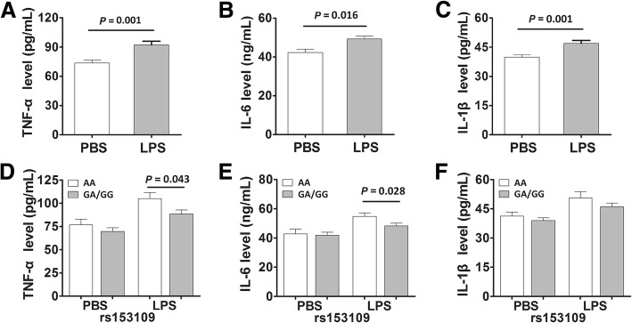 The IL-27 rs153109 A > G polymorphism enhanced pro-inflammatory cytokine release of the human peripheral blood mononuclear cells (PBMCs). The PBMCs of 50 healthy volunteers were incubated in vitro and stimulated with 500 ng/mL lipolysaccharide (LPS) for 8 h. Then the supernatant concentration of TNF-α, IL-6 and IL-1β in groups with different rs153109 genotypes were measured ( a - f ). The horizontal line indicates the mean expression level within each genotype group. The error bar represents standard error of the mean