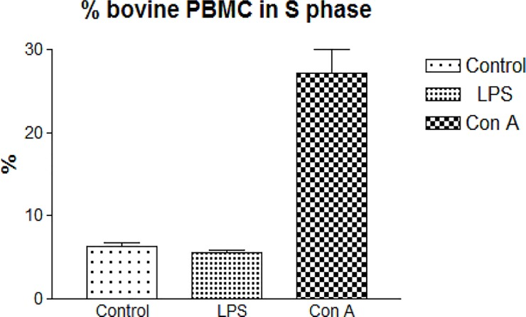 "LPS and Con A-stimulated bovine PBMC. PBMC were separated from venous blood of one cow and immediately submitted to LPS and Con A stimulation assays, respectively. After three days in culture, non-adherent PBMC (lymphocytes) were fixed overnight at -20°C in 70% ethanol and stained with PI in the presence of RNAse for 30 min at room temperature. PBMC were analyzed in a Guava <t>EasyCyte</t> HT flow cytometer using software ""Cell Cycle"" (Merck Millipore). The percentages of S phase cells of control, LPS-stimulated and Con A-stimulated PBMC are shown as mean ± 1 standard deviation of three test replicates. The percentage of S phase cells was significantly higher after Con A stimulation (P"