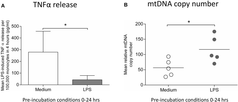 Incubation of monocytes with LPS for 24 h results in reduced ability to release TNFα in response to a second LPS stimulus and increased mtDNA copy number. Blood monocytes were incubated with LPS (10 ng/ml) before measuring cytokine release and mtDNA copy number. (A) The release of TNFα in response to a second 4 h exposure to LPS (10 ng/ml) was measured by ELISA ( n = 5). (B) mtDNA copy number was determined by measuring MT-ND1 relative to B2M using qPCR ( n = 5). Data are represented as (A) mean ± standard deviation or (B) individual values with a line representing the mean. * p