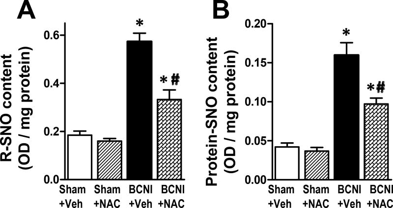 Total S-nitrosothiol and total S-nitrosylated proteins are increased in the penis after cavernous nerve injury, which is partially prevented by treatment with a denitrosylating agent NAC. Saville-Griess assay was performed without (A, for total S-nitrosothiol) or with (B, for total S-nitrosylated proteins) desalting to eliminate low molecular weight nitrosylated thiols. Each bar represents the mean ± SEM of 6 rats. *P
