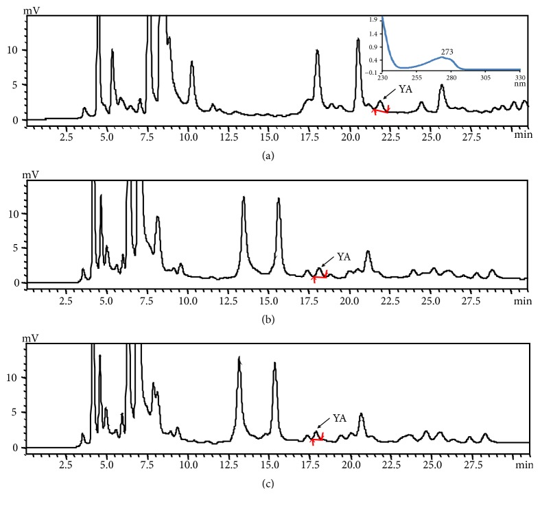 The UV spectrum and <t>HPLC</t> chromatogram of the oyster hydrolysate solution with different initial concentration and 5% final concentration of organic solvent for 40 min in the gradient model: (a) 0.1% TFA; (b) 0.1% TFA/ 0.8% <t>ACN;</t> (c) 0.1% TFA/1% ACN. TFA, trifluoroacetic acid; ACN, acetonitrile.