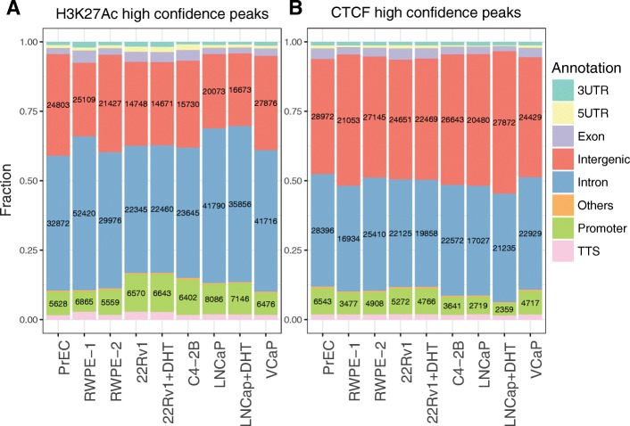 Identification and classification of H3K27Ac ( a ) and CTCF ( b ) sites in prostate cells. H3K27Ac and CTCF ChIP-seq was performed in duplicate for each cell line; for 22Rv1 and LNCaP cells, ChIP-seq was performed in duplicate in the presence or absence of DHT. Peaks were called for individual datasets using MACS2 and the ENCODE3 pipeline, then peaks present in both replicates were identified (high confidence peaks) and used for further analysis (see Additional file 3 : Table S2). The location of the peaks was classified using the HOMER annotatePeaks.pl program and the Gencode V19 database. The fraction of high confidence peaks in each category is shown on the Y axis, with the number of peaks in each category for each individual cell line and/or treatment shown within each bar