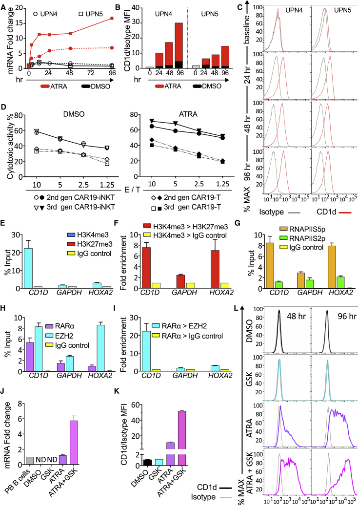 Transcriptional and Epigenetic Basis for Enhancing CAR19-iNKT Cell Reactivity (A) CD1D mRNA quantification by qPCR in CLL cells from two patients upon ATRA treatment (10 −6 M) for 0–96 hr. (B and C) Bar charts (B) and flow cytometry histograms (C) showing CD1d expression on malignant B cells upon ATRA treatment and mean fluorescent intensity (MFI) analysis of CD1d expression in comparison with isotype control. (D) Cytotoxicity of second- and third-generation CAR19-T and -NKT cells against αGalCer-pulsed CLL cells pre-treated with 0.1% DMSO control or 10 −6 M ATRA. Error bars represent SEM of triplicate assays. (E) ChIP-qPCR assay for H3K4me3 and H3K27me3 enrichment in the promoter of CD1D using IgG as control in U266 cells. GAPDH is an active gene control, while HOXA2 is a repressed gene control. ChIP data are shown as a percentage of the input chromatin. (F) ChIP-re-ChIP qPCR assay showing fold enrichment of H3K27me3 or IgG control after immunoprecipitation (IP) against H3K4me3. (G) ChIP-qPCR assay against RNA Pol II for Ser5 over Ser2 phosphorylated form at the promoter of the indicated genes. (H) ChIP-qPCR assay against RARα, EZH2, and Ig control at the promoters of the genes shown. (I) ChIP-re-ChIP qPCR assay showing enrichment of EZH2 or IgG control after IP against RARα in U266 cells for –(I) (n = 3). (J) qPCR quantification of CD1D mRNA in U266 cells treated with 0.1% DMSO, 10 −6 M GSK343, 10 −6 M ATRA or 10 −6 M GSK343 plus 10 −6 M ATRA. Values are normalized to CD1D mRNA expression levels in normal peripheral PB B cells (n = 3). ND, not detectable. (K and L) Relative MFI analysis (K) and histogram depiction (L) of CD1d expression in comparison with isotype control in U266 cells from the same experiment shown in (J). Error bars represent SEM. See also Figure S4 .