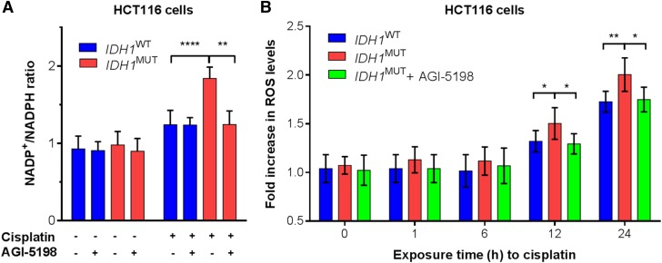Cisplatin exposure of IDH1 MUT HCT116 cells decrease NADPH levels and increase ROS levels, and AGI-5198 attenuates these effects. A ) Cells were incubated in the presence or absence of 1 µM AGI-5198, treated with cisplatin (5 µM), and harvested, prepared, and colorimetrically analyzed for NADP + :NADPH ratios after 72 h. B ) As in A , but cells were treated with cisplatin (25 µM) and analyzed with a fluorometric assay for ROS levels at different time points. * P
