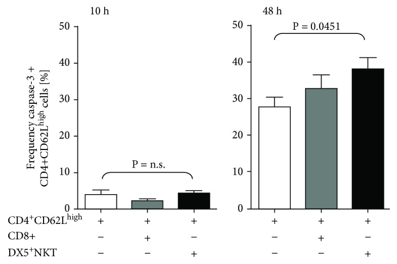 Intracellular flow cytometry analysis of caspase-3 in CD4 + CD62L high cells after 10 h and 48 h of monoculture or coculture with CD8 + T or CD3 + DX5 + NKT cells. Results are given as mean + SEM. Experiments were repeated at least three times ( ∗ P