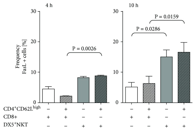 Flow cytometry analysis FasL expression of CD8 T and CD3 + DX5 + NKT cells after 4 h and 10 h monoculture or coculture with CD4 + CD62L high cells. Results are given as mean + SEM. Experiments were repeated at least three times ( ∗ P
